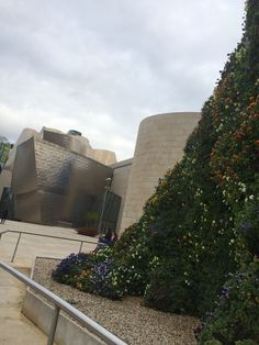 Guggenheim And The Popy