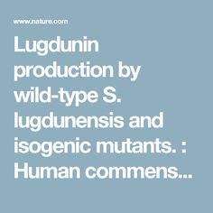 Lugdunin production by wild-type S. lugdunensis and isogenic mutants. : Human commensals producing a novel antibiotic impair pathogen colonization : Nature : Nature Research