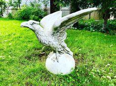 Unii preferă piticii de gradină, alții vulturii / Some prefer garden gnomes, others like eagles 🤓