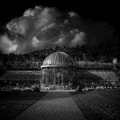 Take A Walk On The Dreamside, photography by Bruno Mercier