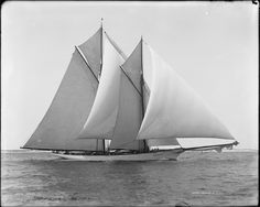 """The 90-foot Burgess designed """"Merlin"""", built in 1888 by Lawley (South Boston)"""