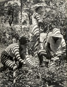 Walter Zadek Title: Kibbutz workers harvesting , ca. Old Jaffa, Israel History, Monochrome Photography, Old Pictures, Middle East, Vintage Photos, Cool Photos, The Past, Culture