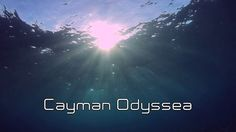 Cayman Odyssea by Frans De Backer. Cayman Odyssea is a tribute to the aquatic world of The Cayman Islands. A beautiful and diverse world that needs to be protected for the future generations. It's a short film made for the CITA International Underwater Film Festival.