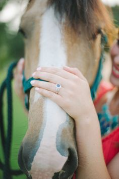 country barn engagement photos...but subtract the horse and add a shorthorn heifer :)