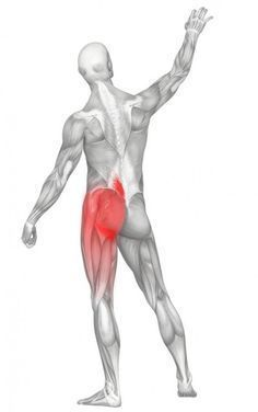 Literally a pain in the butt. Massage Therapy for Back Pain, Hip Pain, and Sciatica: an area of common trigger points in the gluteus medius and minimus muscles of the hip. Sciatica Symptoms, Sciatica Pain Relief, Sciatic Pain, Sciatic Nerve, Nerve Pain, Sciatica Stretches, Sciatica Massage, Massage Tips, Sciatica