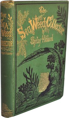 """the seaweed collector"" by shirley hibberd, gorgeous green antique book with gold & black embossing"