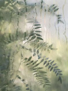 Nature Aesthetic, Aesthetic Colors, Aesthetic Photo, Aesthetic Pictures, Sage Green Wallpaper, Green Nature Wallpaper, Verde Vintage, Mint Green Aesthetic, Green Photo