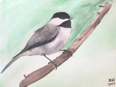 Chickadee Original Watercolor Painting, Bird Painting -Watercolor Art- Animal Art