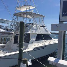 Destin fishing charters Destin Fishing, Fishing Charters, Sailing Ships, Florida, Boat, Dinghy, Boats, Tall Ships, Ship