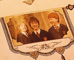 Hermoine, Harry, and Ron Harry Potter Gif, Harry Ron Hermione, Harry Potter Pictures, Harry Potter Universal, Harry Potter Characters, Harry Potter World, Draco, James Potter, Harry Potter Background