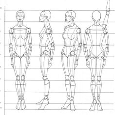 How to Draw different body types by takaya-ame on DeviantArt