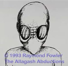 HybridsRising.com: Allagash-Abduction-Insect-Type-Being-Alien.jpg