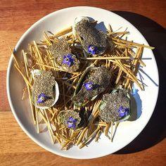 Hay smoked oysters fennel soy wakame chía chips and borage #foodporn #truecooks #alcaldecocinafranca #guadalajara #jalisco #organic #healthyfood #mexicoesgourmet #feedfeed #f52 #cheflife #chefsofinstagram #chefstalk #gastroart #gastronogram #wildchefs #TheArtOfPlating #cookwellcoalition by pacohidalgo