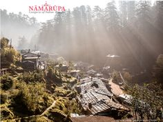 New Namarupa includes article by Eddie Stern and Sharath