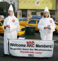 American Kennel Club = Klux Kanine Klan - Top 10 Insane P.E.T.A Publicity Stunts | TopTenz.net