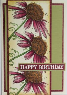 Michelle's Cards & Stamps: Fine Flowers Darkroom Door stamps with Copic markers