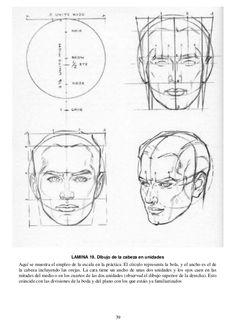 39 LAMINA 19. Dibujo de la cabeza en unidades Aquí se muestra el empleo de la escala en la práctica. El círculo representa...