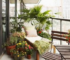 214 Best Roof Terrace Gardens Images Rooftop Gardens Terraced