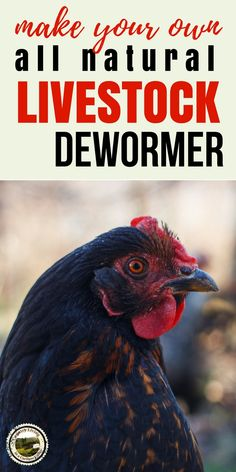 Herbal Dewormer for Livestock - all natural. For chickens, goats, sheep, horses, pigs