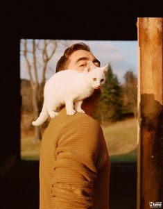Lee Pace with his cat Artic Freeze for W Magazine by Eric Chakeen Lee Movie, Lee Pace Thranduil, Pushing Daisies, Nicholas Hoult, Jethro, Mark Ruffalo, Pretty Men, Michael Fassbender, The Hobbit