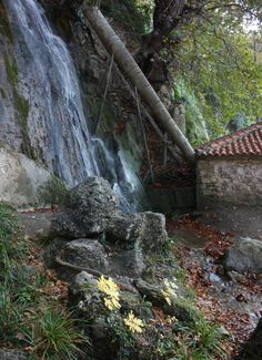 Waterfalls in Ypati village, Fthiotida Prefecture, central Greece Greek Beauty, Greece, Landscape, Places, Waterfalls, Outdoor, Travelling, Photos, Greece Country