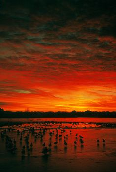 Holmes Lake, Lincoln, NE #lifeisright #lnk