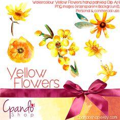 Yellow flowers 6 Clip art (Png images, transparent background) floral clip art, watercolor flower clipart, watercolor clipart, nature clip