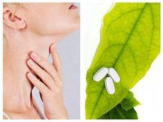 REMEDII naturiste pentru persoanele cu boli TIROIDIENE