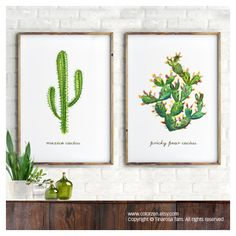 Watercolor painting Succulent art print, Set of 2 Botanical print,... (75.885 COP) ❤ liked on Polyvore featuring home, home decor, wall art, cactus home decor, cactus paintings, succulent wall art, floral paintings and floral home decor