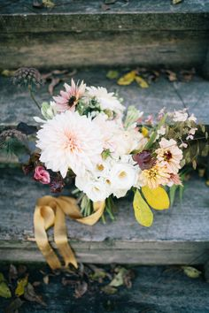 dahlias, gold ribbon