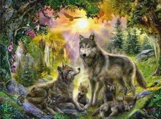 WOLF IN COLORFUL WOODS