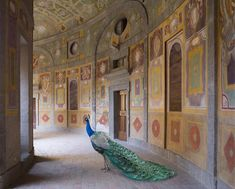 For their third solo show of photographs by Karen Knorr, Danzinger Gallery is currently exhibiting a selection of the photographer's constructed anima...