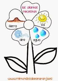 Resultado de imagen de laminas educativas Preschool Spanish, Spanish Teaching Resources, Spanish Activities, Teaching Activities, Teaching Science, Science For Kids, Science And Nature, Science Worksheets, Classroom Language