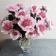 Our soft pink #peonies are gorgeous! Happy Friday!