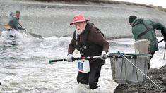 Canterbury, Baby Strollers, Seasons, Freshwater Fish, Science, Baby Prams, Seasons Of The Year, Prams, Strollers