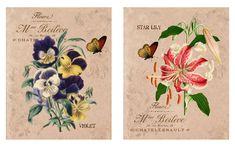 Botanical Wall Art Set, Provincial French Country Floral Wall Art Prints, Gallery Wall Set #BotanicalWallArt #FloralWallArt #GardenArt #FrenchCountry #WallArtPrints #GalleryWallSet #WallArtSet #FarmhouseDecor #BotanicalPrint #NaturePrints