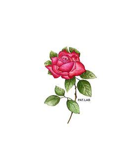 Ma rose, ma rose, ma rose, ma rose écoute mes murmures Ma rose, ma rose, ma rose, ma rose tu peux être sûre  Que tu n'seras plus jamais seule pour franchir les murs Il y a d'la place sur mon épaule pour une rose et son armure  Love Plus Jamais, Place, Body Armor