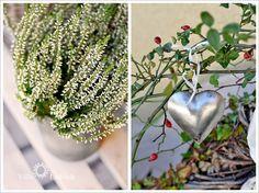 #autumn #decoration