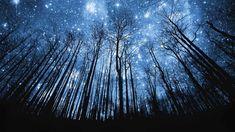 Cosmic Energy | www.cosmic-energy.org