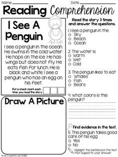 First Grade Reading Fluency and Comprehension Passages
