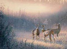 Trio of Whitetails -  deer painting by Jim Kasper