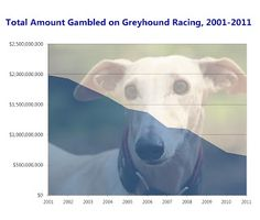 Dog Race Gambling Drops for Twenty Years in a Row According to new data that has been released by the Association of Racing Commissioners International, gambling on dog races has now declined for twenty consecutive years.
