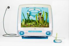 Technology meets nature in beautiful 'Plant Your Mac' photo series