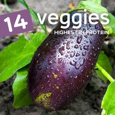 Vegan's listen up, eat more of these high protein vegetables to increase your protein intake! Veggies High In Protein, High Protein Recipes, Vegetable Protein, Vegan Protein, Healthy Choices, Healthy Life, Healthy Snacks, Healthy Eating, Healthy Cooking