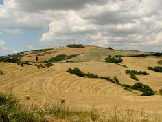 Tuscan landscape near Siena