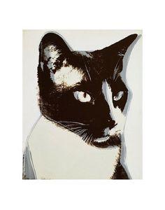 Andy Warhol Cat, c.1976 Kunstdruk