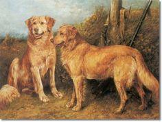 Two Golden Retriever Gundogs 1898 by John Emms   Painting