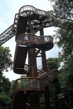 Treetop Walk, Kew Gardens, London! I loved this! It was a little scary because when the wind blew it was shaking a little bit! <3