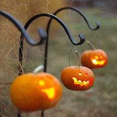 mini pumpkins on shepherd hooks. perfect for trick or treat night! on halloween night in the dark these would look like they were floating in the air, very cool.