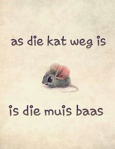 as die kat weg is S.A.